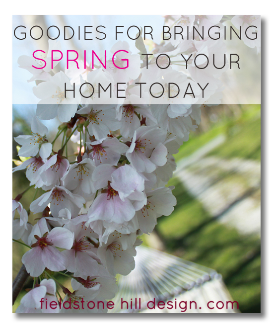Goodies to bring Spring to your home early, inspired by the honeybee, via Fieldstone Hill Design
