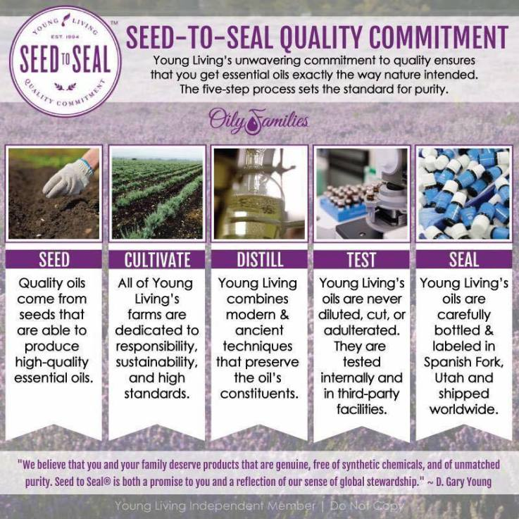 Seed to Seal commitment