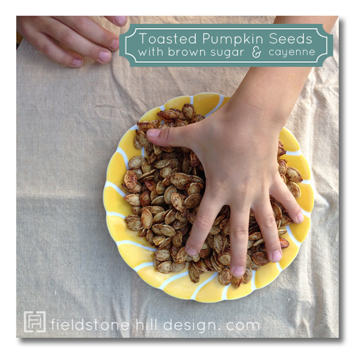 Toasted Pumpkin Seeds with Brown Sugar and Cayenne by Fieldstone Hill ...