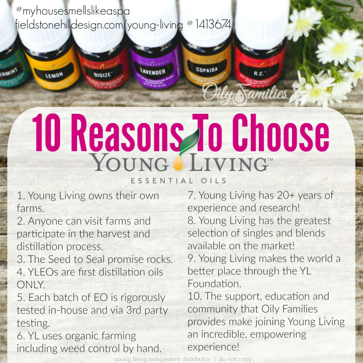 1413674 10 Reasons to Choose YL
