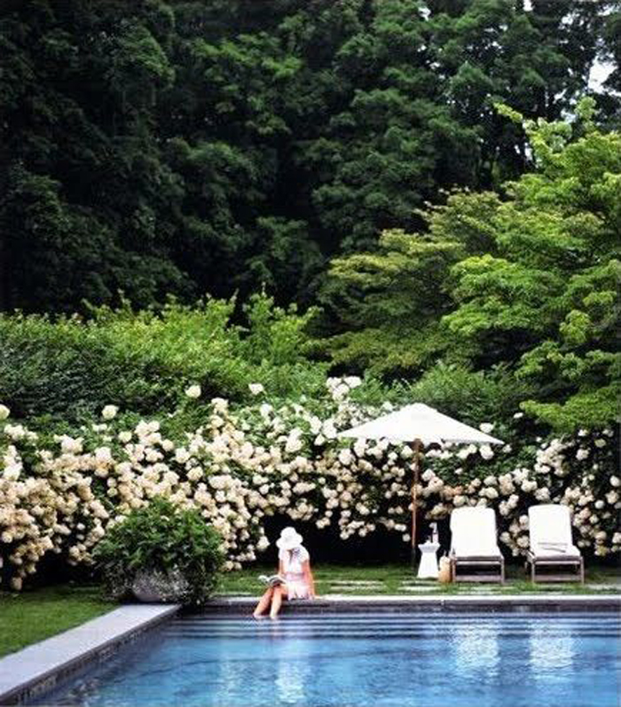 layered shade plants and poolside, outdoor retreats via @fieldstonehill