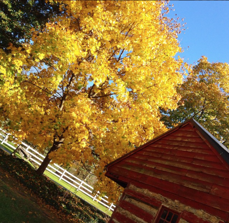 Fieldstone Hill property in Fall via @FieldstoneHill