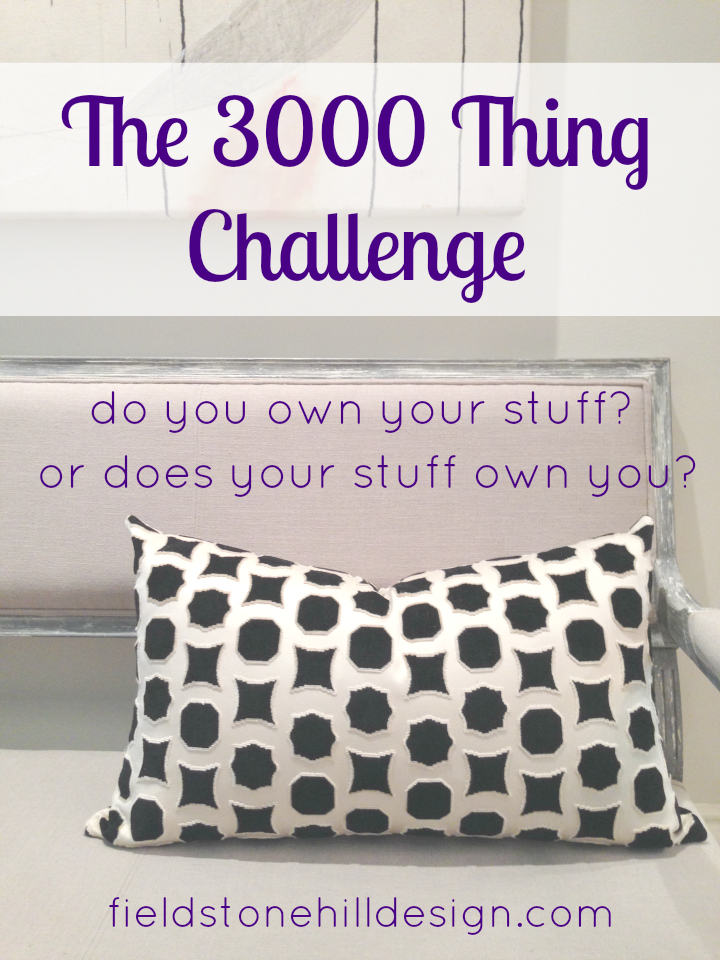 3000 Thing Challenge via @fieldstonehill